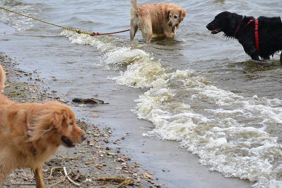 3水怖い.jpg